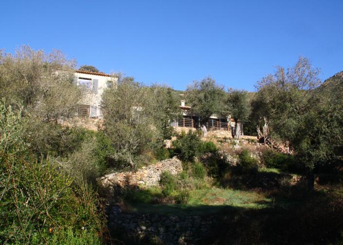 Le beau domaine de l'Oliveraie du Fango en Corse, haute-corse